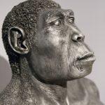 Was ist artgerechte Nahrung für den Homo Sapiens?
